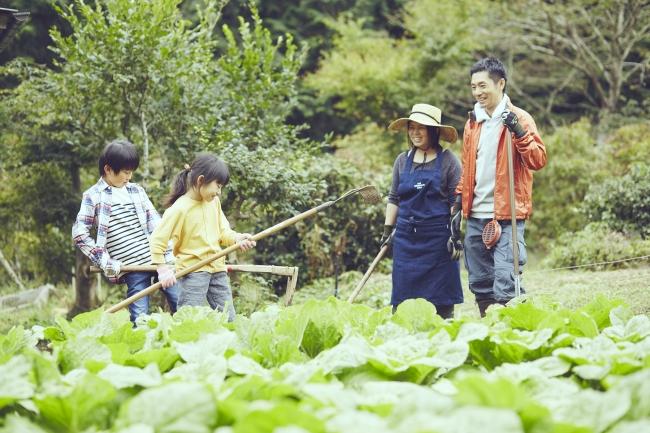 埼玉県での農的生活
