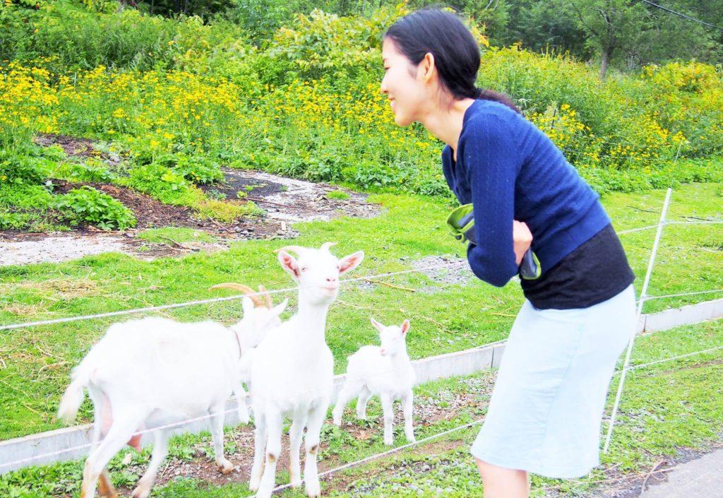 松浦さんとヤギ