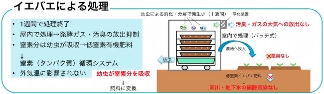 ハエシステムのイメージ