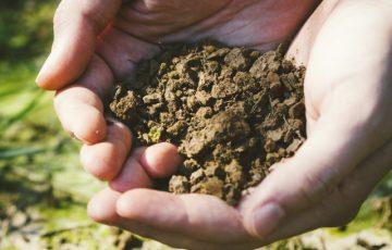 土をすくっている画像